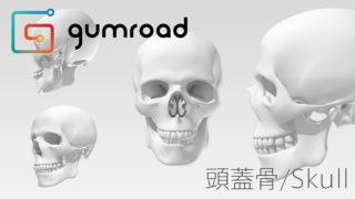 昔、制作した頭蓋骨の3DデータをGumroadで販売してみる事にした。