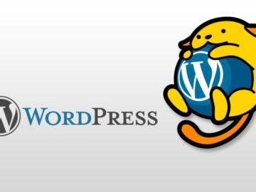 WordPress記事内の最初の画像を表示、画像表示問題も解決。